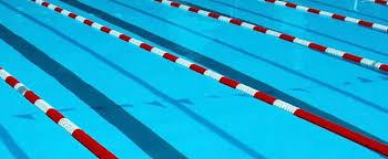 Boys Swimming: Marshall 113 Allegan 72