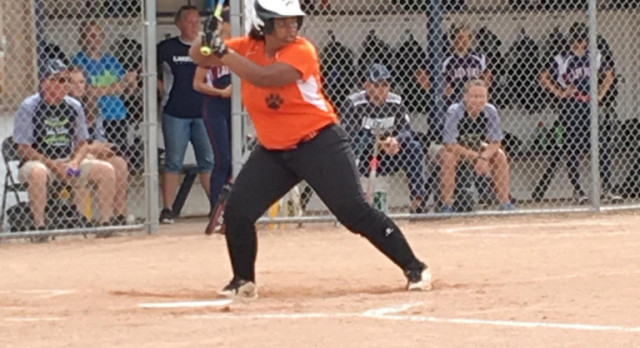 Softball: Tigers season ends with loss to Lakewood
