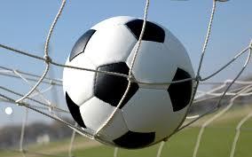 Girls Soccer: Allegan 3 Vicksburg 0