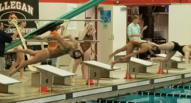 Tiger Swim Team Hosts Marshall