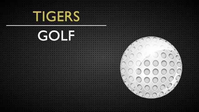 Fridley Girls Golf Acknowledged