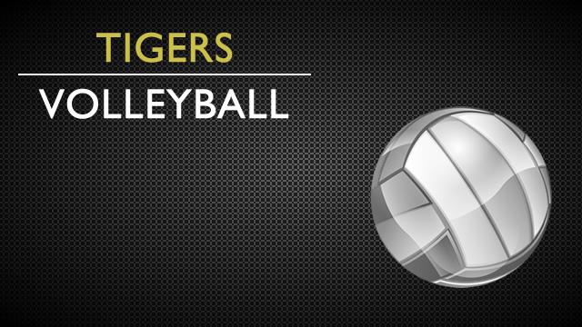 Volleyball Updates