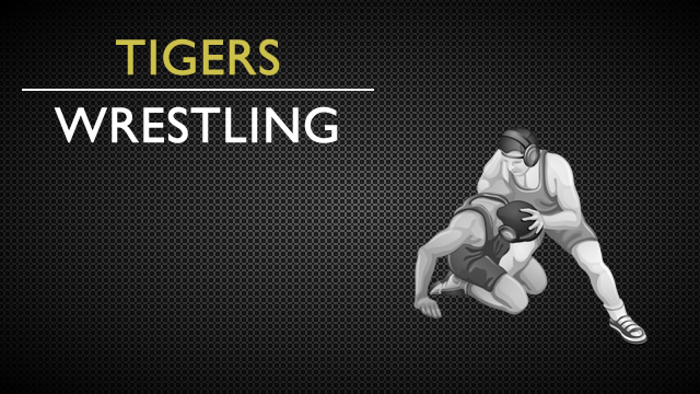 Fridley Wrestlers do well at Individual Section Tourney