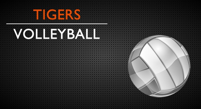 Volleyball Meeting – May 17