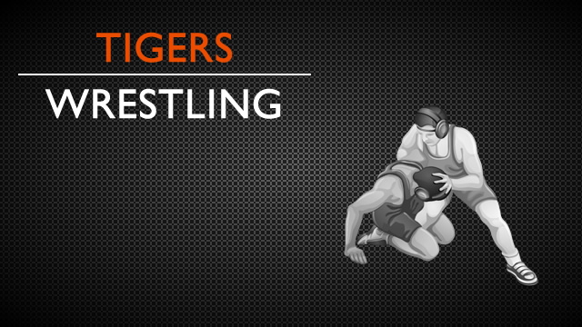 Delano Wrestlers advance at State Tourney!