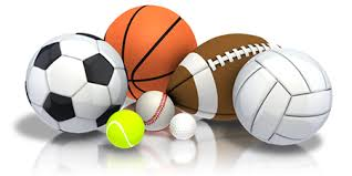 MHS and MMS 2017 Fall Sports/Activities Information
