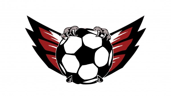 Grimes SoccerBall with Wings