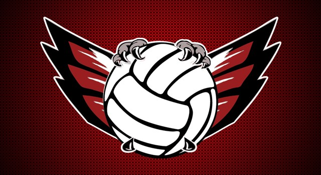 Lakota West Boys Volleyball Tryout Information