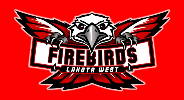 Fledgling Firebird Fall Teams All End Season As Winners