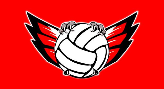 OPEN GYM ANNOUNCEMENT!!!!! Boys Volleyball Schedule