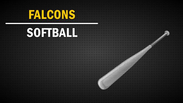 Softball Skill Sessions
