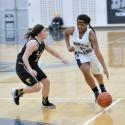 Varsity girls basketball vs. North Branch 2016