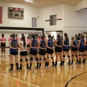 Volleyball vs. Tree of Life