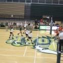 GlenOak Volleyball vs Green