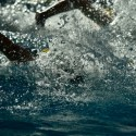 NEAC Swimming Championships