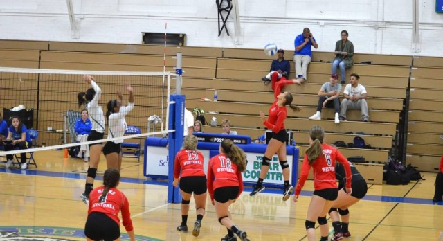 Volleyball Faces Off Against Bears, Wildcats