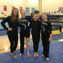 2017 Girls Gymnastics Team Photos