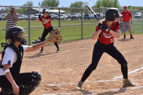 White Hawks Softball Heads into Section Playoffs