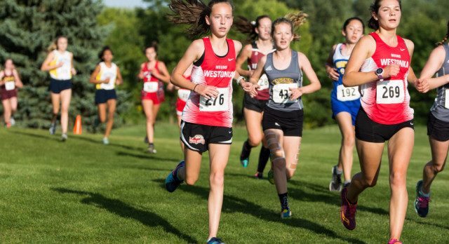 White Hawks Run at Gerry Smith Invite