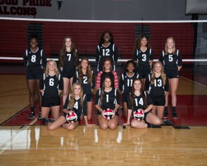 Varsity Volleyball 2016-17