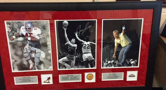 Ohio State Icons!