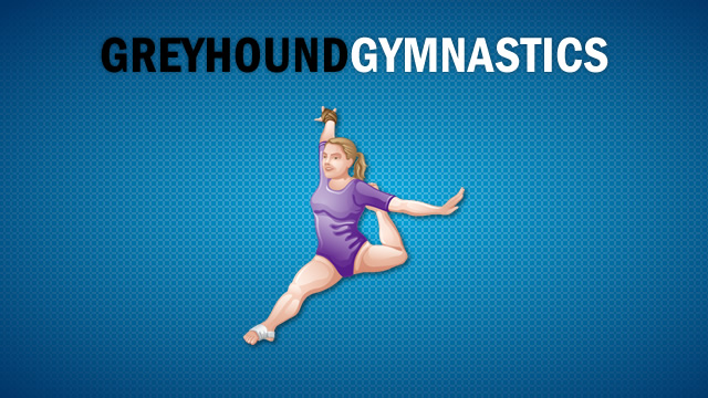 Girls Gymnastics Meeting