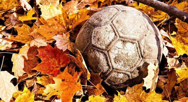 2016 Fall Soccer Schedules and Rosters