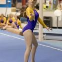 Gymnastics Quad, January 2nd
