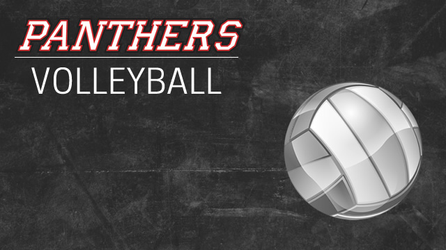 Volleyball finishes incredible season in sectionals