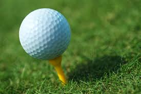 High School Girls Golf Starts Friday July 29