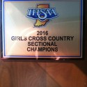 Cross Country Girls Sectional Champions!