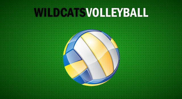 Extra, Extra . . .Calling All Volleyball Players!