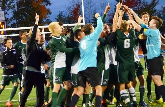 Novi takes district boys soccer title