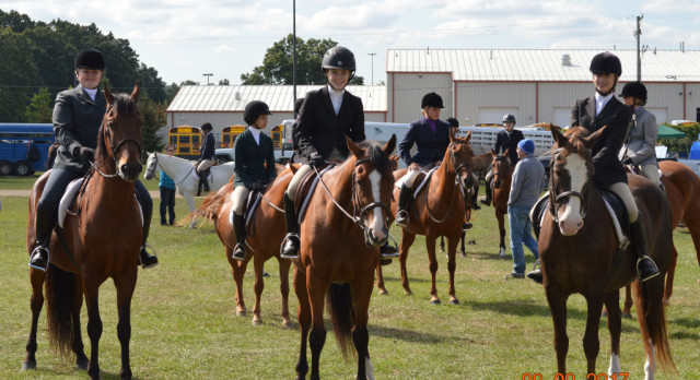 Novi Equestrian Season comes to an end
