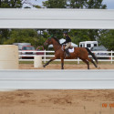 Novi Equestrian Meet #2