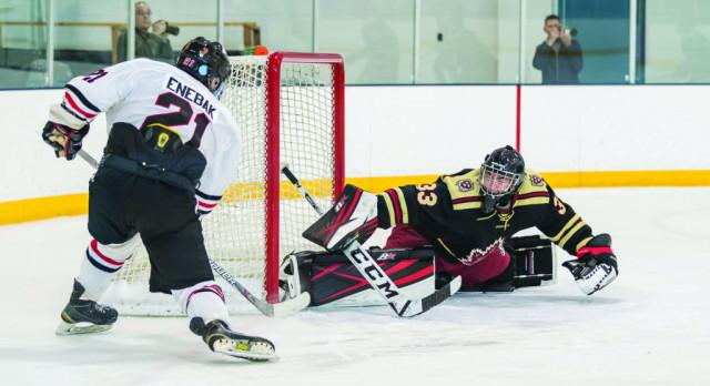 Boys Hockey: Section play tonight!