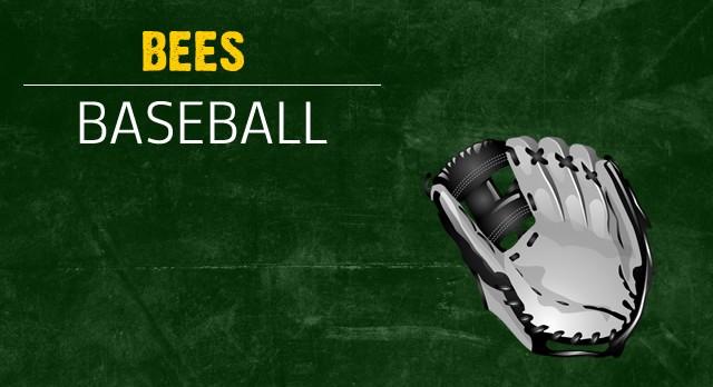 Baseball Team Fundraiser