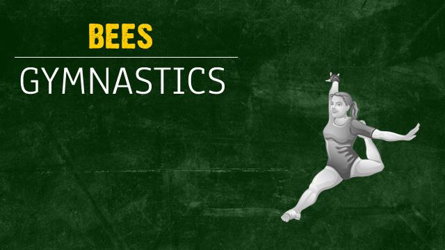 Gymnastics Team Advances to Districts
