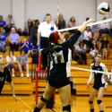 Wildcat Volleyball vs Person 9.18.2014