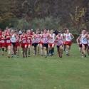 Boys Cross Country @ IHSAA Semi-State  10/24/15