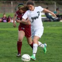 Allen Park Girls Varsity Soccer – 2015 Season Highlights
