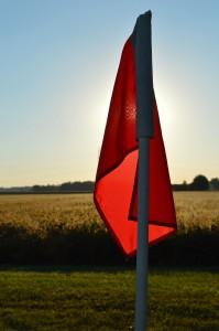 flag sun