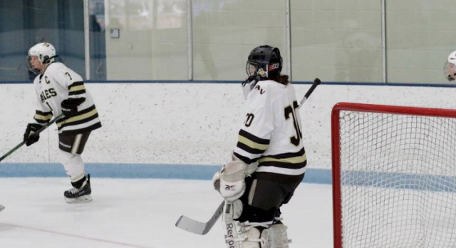 Girls Hockey Opens Sections With a Victory