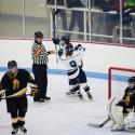 2015-12-04 HHS Girls Hockey vs Eveleth-Gilbert