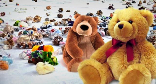 2nd Annual Teddy Bear Toss