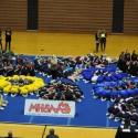 Cheer Regional Photos