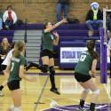 Volleyball, 11-3-14