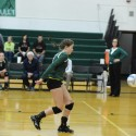 VARSITY VOLLEYBALL – FREELAND FALCONS VS. ALMA PANTHERS