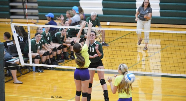 Varsity Volleyball Sweeps Alma