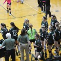 10-12-16 – JV VOLLEYBALL – LADY FALCONS VS. STANDISH-STERLING